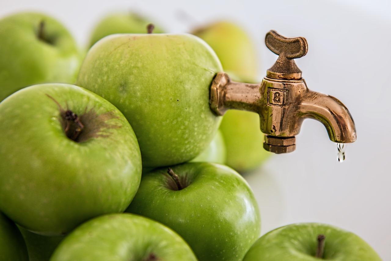 Fruitiers : comment valoriser vos arbres