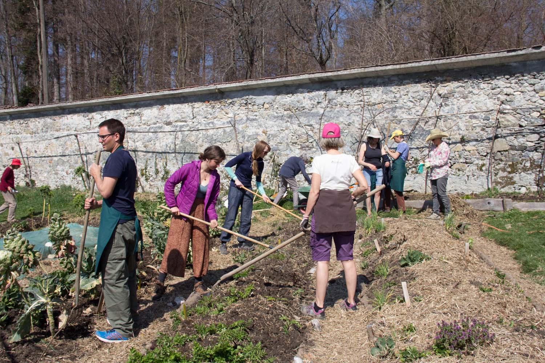Chantier participatif - plantations