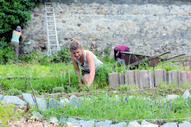 Cycle d'initiation à la permaculture - Entretenir son jardin